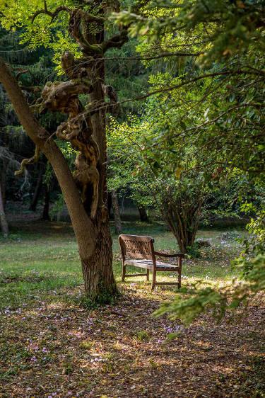 Un banc dans le jardin du Domaine Le Colombier à Carcassonne