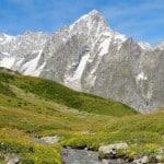 Ruisseau de haute montagne au Tour du Mont Blanc au Val Ferret avec vue sur les Grandes Jorasses