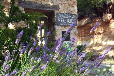 L'enseigne du Monastère de Ségriès à l'entrée du domaine avec une plante de lavande au premier plana