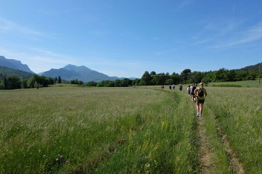 groupe de participants d'un stage jeûne et randonnée sur un sentier dans la plaine devant Moustiers-Ste-Marie avec vue sur le Grand Margès