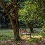 banc jardin domaine le colombier le jeune 150x150 - Galerie de photos/archives