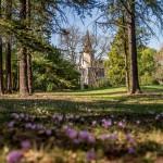 Vue sur la maison de maître entre de grands arbres prise du jardin du domaine Le Colombier à Carcassonne