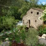moulin domaine miravel faire un jeune galerie 150x150 - Galerie de photos