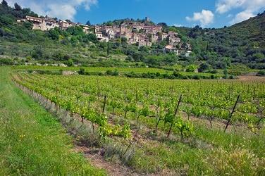 vignoble roquebrun petit - Domaine de Miravel - version avant avril 2019