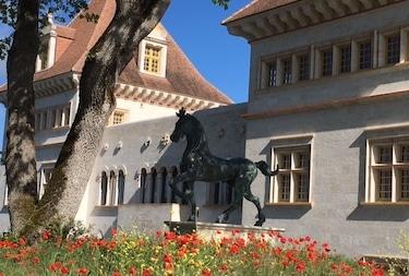 cheval exterieur jeune confort luxe 375x250 1 - Château de Guirauton - version avant avril 2019