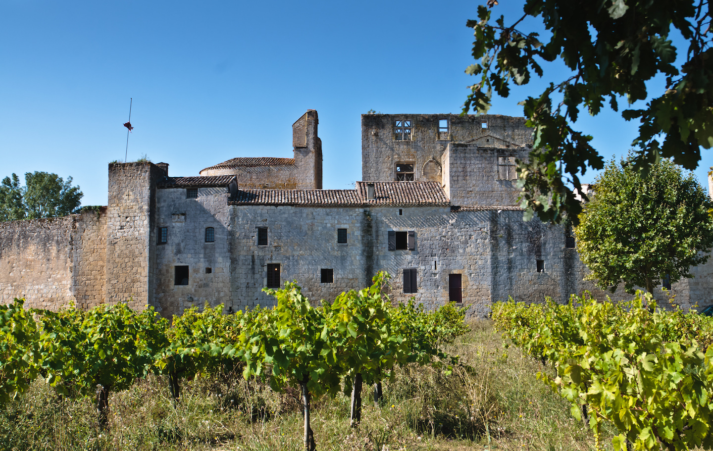 château laressingle - Domaine d'Orion